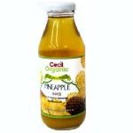 HEALTH TRADE ΧΥΜΟΣ ΑΝΑΝΑ GOLDEN ΒΙΟ 350 ml